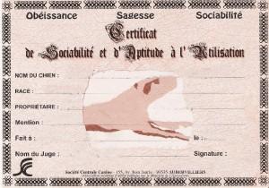 diplome-csau-certificat